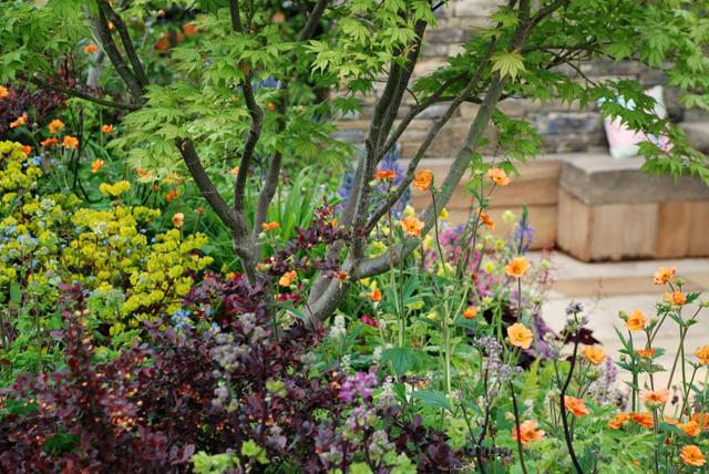 Cornerstone show garden RHS Malvern lisa Cox designs