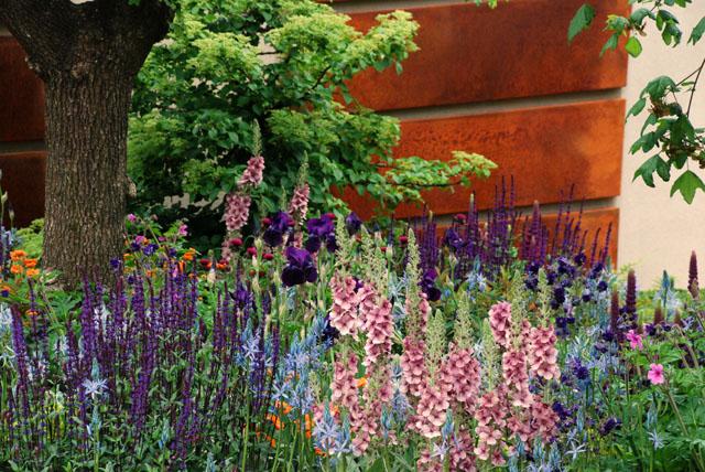 Morgan Stanley Healthy Cities Garden Lisa Cox RHS Chelsea 2015