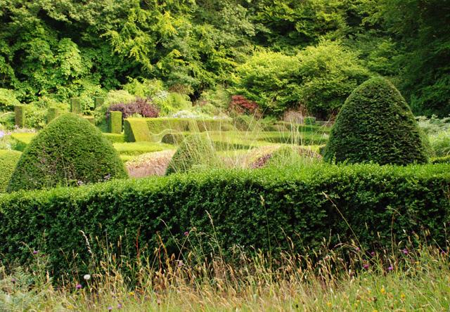 Garden at Veddw Lisa Cox Designs
