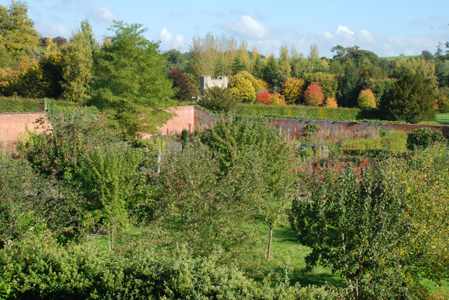 View over the orchard at Hampton Court Castle Lisa Cox