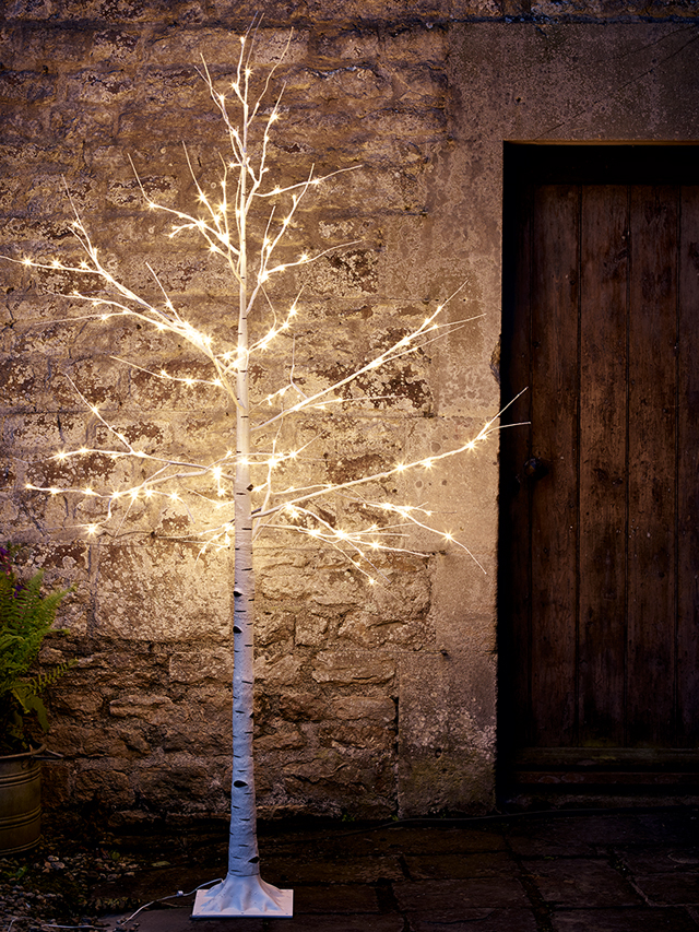 outdoor light up birch tree from Cox & Cox