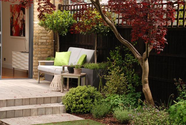 Chiswick Garden 9 months on Lisa Cox Designs