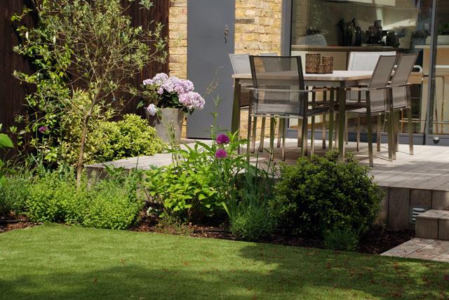 Chiswick garden 6 months on Lisa Cox Garden Designs