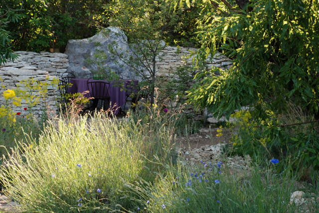 L'Occitane Garden at RHS Chelsea 2016 Lisa Cox