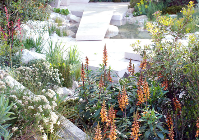 The Telegraph Garden RHS Chelsea 2016 Lisa Cox