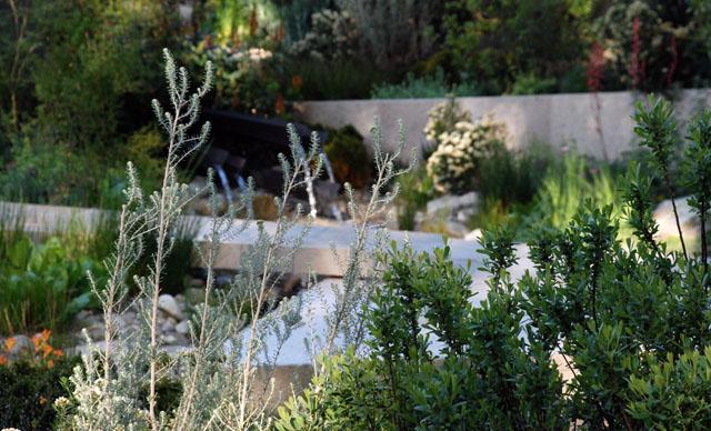 The Telegraph Garden planting RHS Chelsea 2016 Lisa Cox