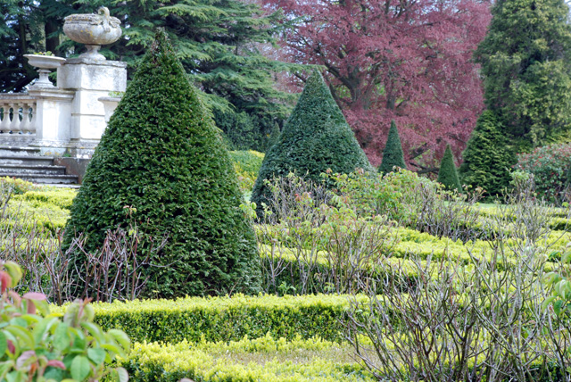 Topiary at Highnam Court Lisa Cox Designs