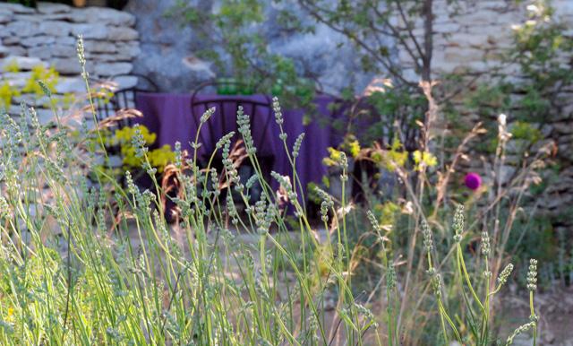 Wild planting L'Occitane Garden RHS Chelsea 2016 Lisa Cox