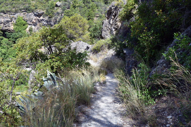 Pathway to the start of the Rio Grande Lisa Cox Garden Designs