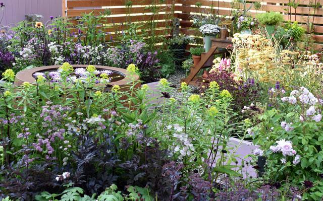 RHS Hampton Court 2016 Katie's Garden Summer Lisa Cox