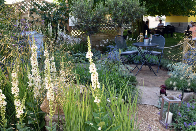 The Drought Garden RHS Hampton 2016 Lisa Cox