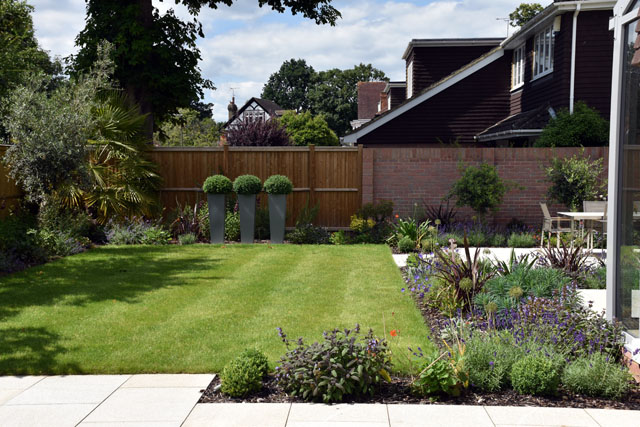 Weybridge garden 9 months after planting Lisa Cox