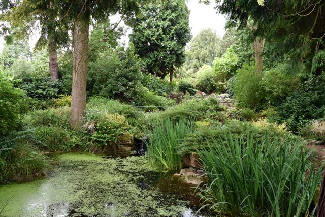 Gardens at Dewstow Lisa Cox Designs