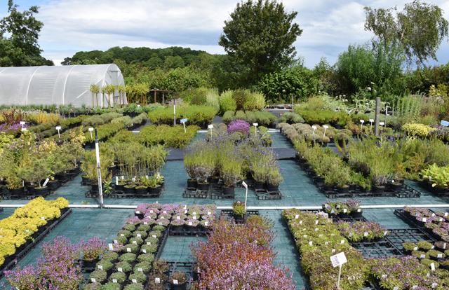 Jekka's Herb Farm Lisa Cox Garden Designs