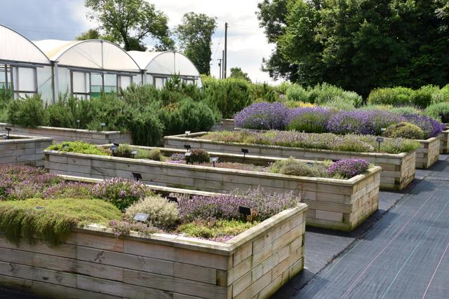 Jekka's Herb beds Lisa Cox Garden Designs