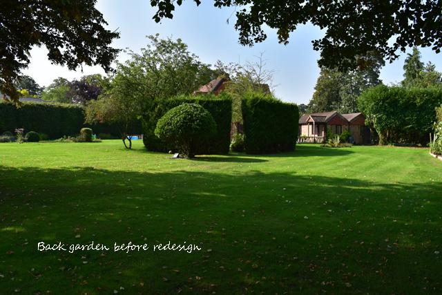back-garden-before-redesign-hurley-lisa-cox