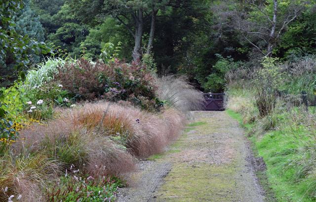 driveway-at-barn-house-garden-lisa-cox-designs