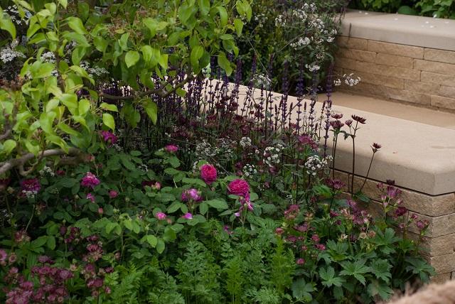 Homebase Garden Adam Frost Chelsea 2013