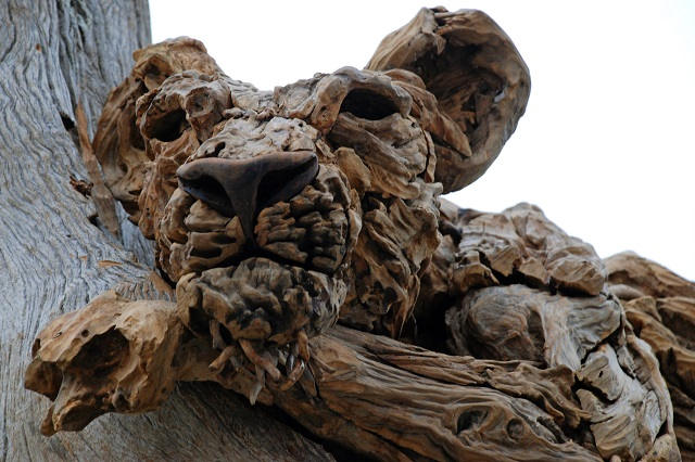 James doran webb at rhs chelsea flower show 2013 lisa Driftwood sculptures for garden
