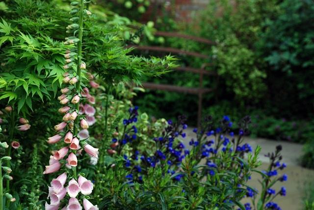 M&G Garden planting Chelsea Flower Show 2013