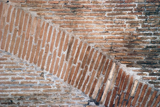 Wall in the colosseum Rome by Lisa Cox