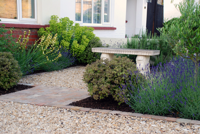 Leatherhead front garden Lisa Cox Garden Designs