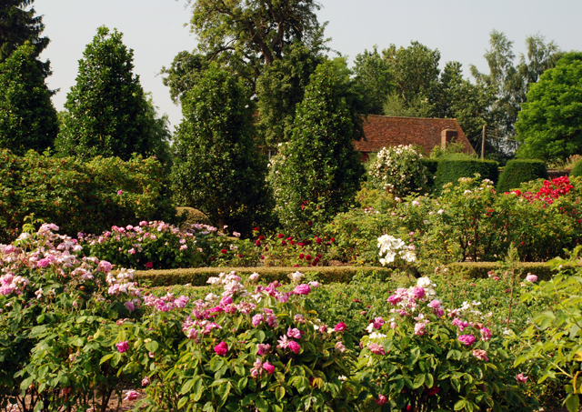 The Rose Garden at Loseley Lisa Cox Designs