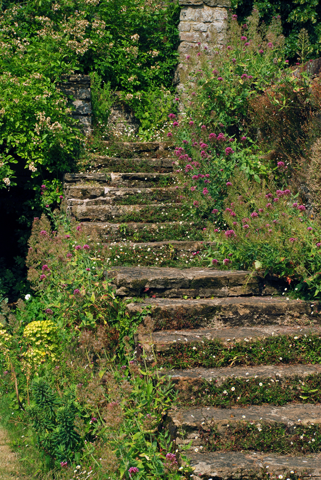 The steps from the long water at Loseley Park Lisa Cox Designs