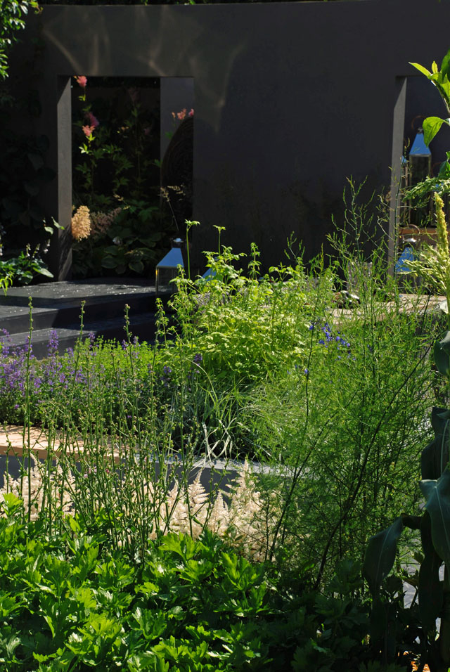 Vestra Wealth's Jardin du Gournet RHS Hampton Court  2013 Lisa Cox
