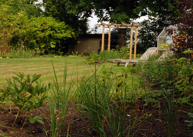 East Horsley garden after redesign Lisa Cox Designs