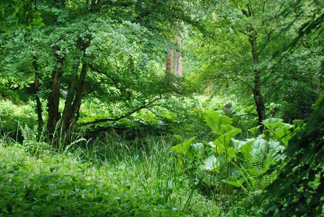 Hannah Peschar Sculpture Garden in Surrey Lisa Cox