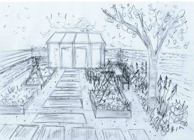 Sketch of potager West Horsley garden Lisa Cox Designs