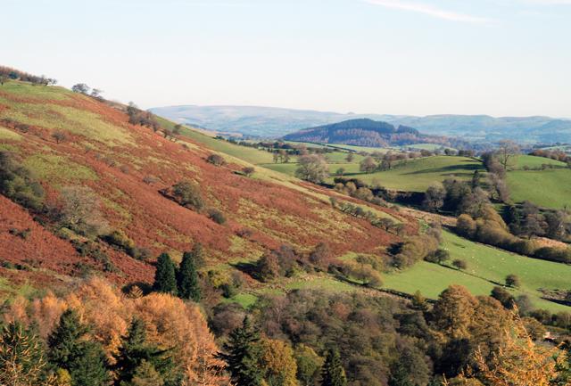 The Welsh hills Lisa Cox Garden Designs