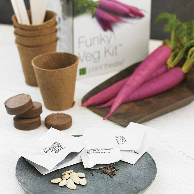Funky veg kit from Not on the high street