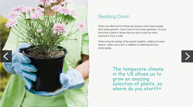 Bedding down - M&S Bank article by Lisa Cox Garden Designs