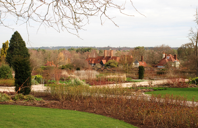 Rose Garden at RHS Garden Wisley in March by Lisa Cox