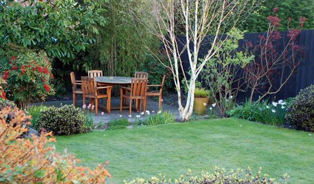 Our back garden Leatherhead Lisa Cox Designs