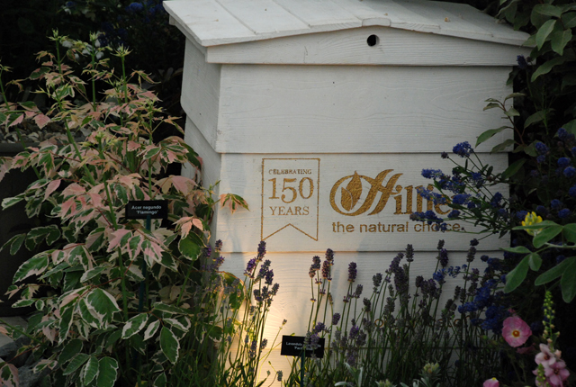 150 years of Hilliers RHS Chelsea 2014 exhibit Lisa Cox