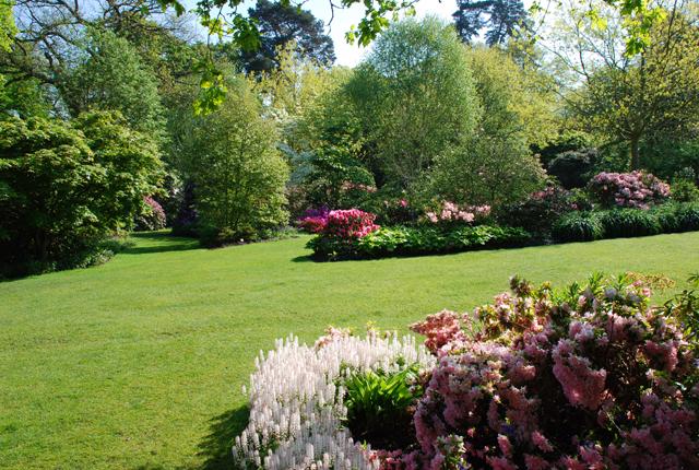 Battleston Hill at RHS Wisley Lisa Cox Garden Designs