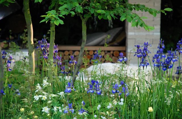 Homebase Garden planting RHS Chelsea 2014 Lisa Cox Designs