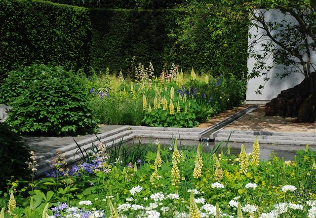 Laurent Perrier Garden Chelsea Flower Show 2014 Lisa Cox