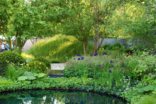 RHS Chelsea No Man's Land garden Lisa Cox Designs