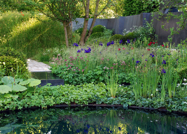 RHS Chelsea No Man's Land gdn Lisa Cox Designs
