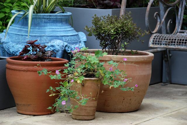 Groups of pots Bletchingley courtard garden Lisa Cox Desins