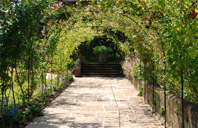 Arched walkway at Glyndebourne Lisa Cox Garden Designs - Copy