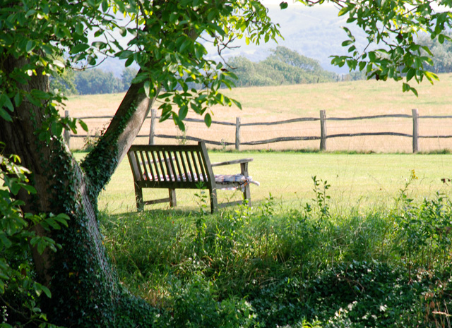 Bench overlooking the countryside at Glyndebourne Lisa Cox Garden Designs - Copy