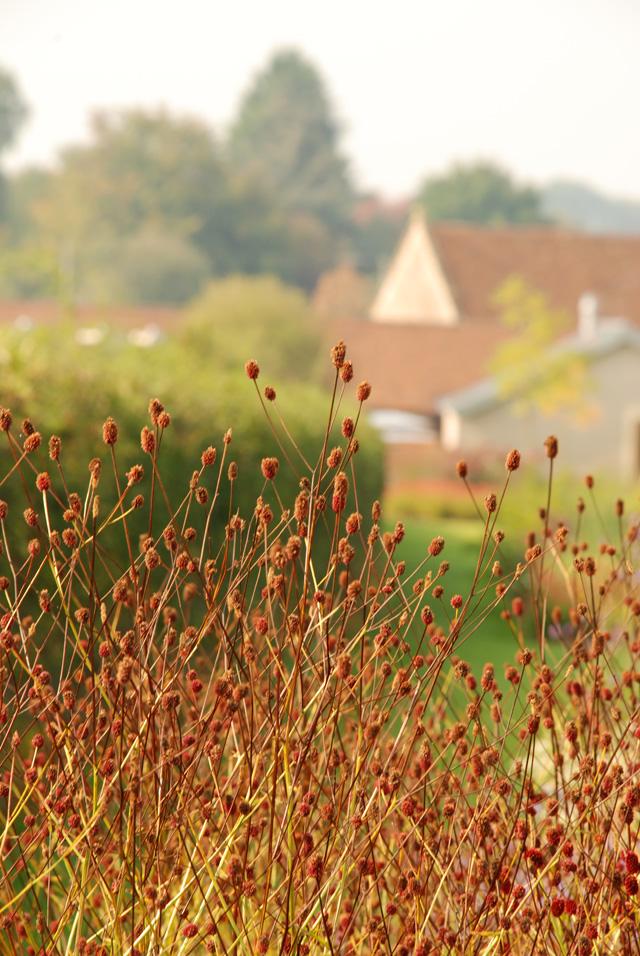 Hauser Wirth garden Lisa Cox