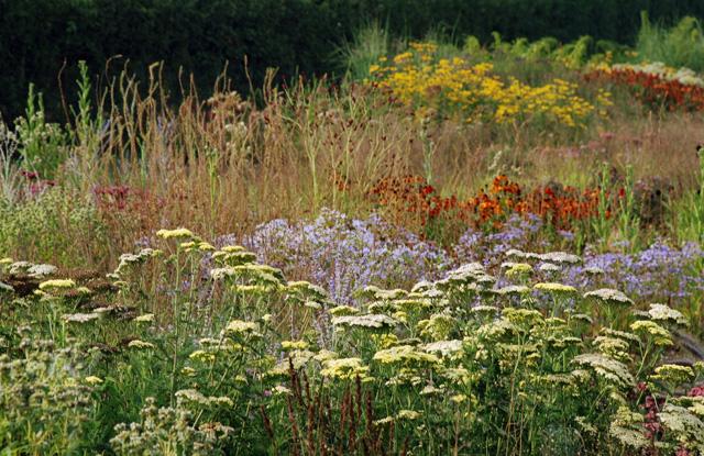 Perennial planting Hauser & Wirth Somerset Lisa Cox Garden Designs