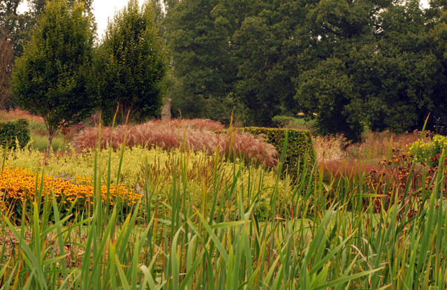 September at Sussex Prairies Lisa Cox Garden Designs