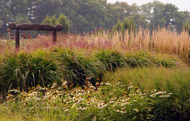 Sussex Prairies garden Lisa Cox Designs